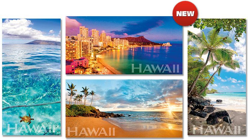 Hawaiian Panoramic Magnets