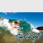 Surf's Up - Hawaii Magnet
