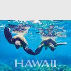 Hands - Hawaii Magnet