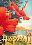 Hibiscus Beach Day - Hawaii Magnet
