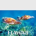 Honeymooners - Hawaii Magnet