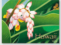 Pearly Shells - Hawaiian 'Alohi Magnet - Glitter Embellished