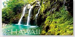 Emerald Falls - Hawaii Panoramic Magnet