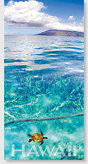 Emerald Sea - Hawaii Panoramic Magnet