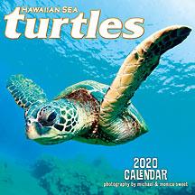 Hawaiian Sea Turtles - 2020 Deluxe Hawaiian Wall Calendar